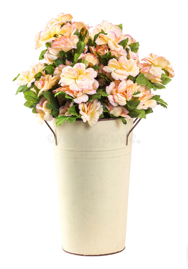 Bouquet of Jasmine flower stock image. Image of gift - 32036069