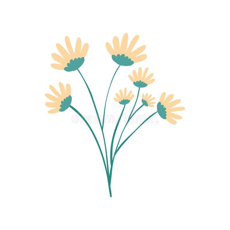 Bouquet Jaune De Fleur De Marguerite De Couleur De Dessin De