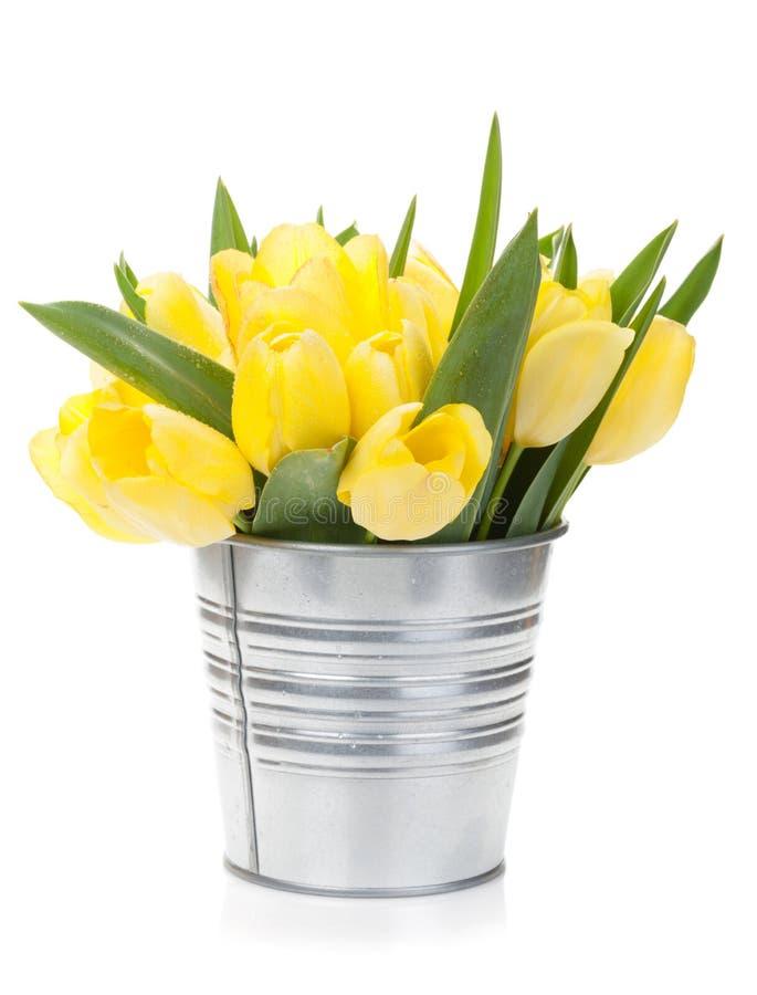 Bouquet jaune frais de tulipes photos stock