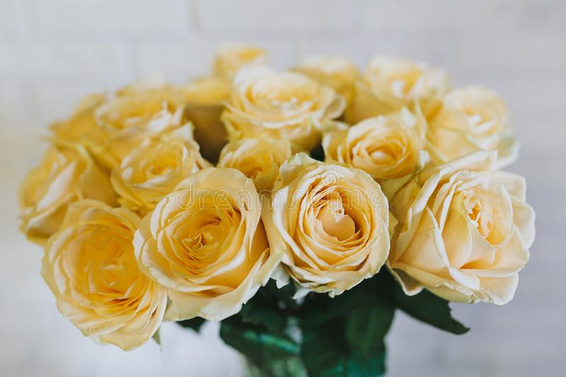 Bouquet of large yellow roses close up royalty free stock images