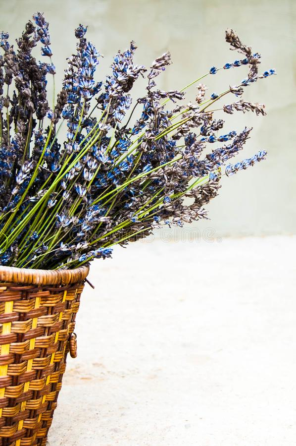 Bouquet of lavender in a wicker basket. Dried lavender. royalty free stock photo