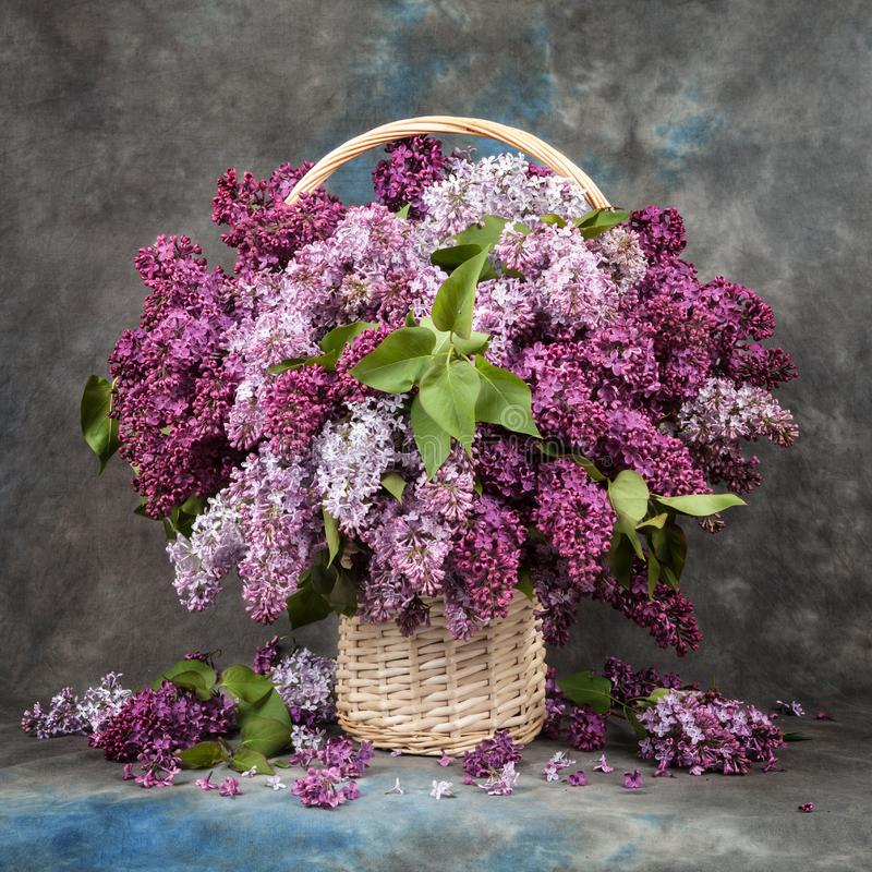 Bouquet of lilac in a basket on table. stock images