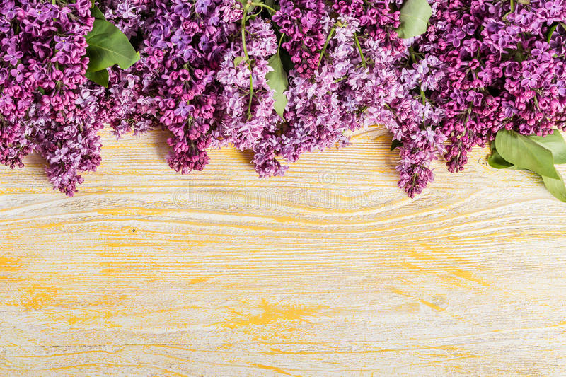 Bouquet of a lilac royalty free stock photography