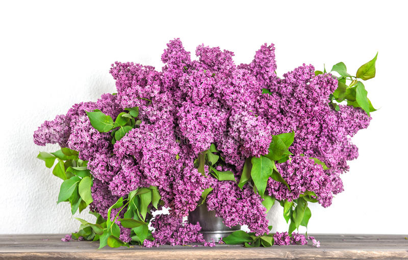 Bouquet of lilac blossoms. Spring flowers stock photo