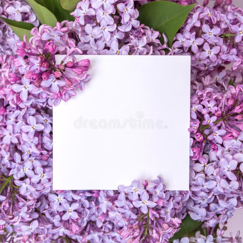 A bouquet of lilac and a note inside. Spring violet flowers royalty free stock photos