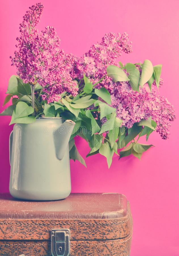 Bouquet of lilac in an old enameled teapot on vintage suitcase on pink background. Retro style still life. Bouquet of lilac in an old enameled teapot on vintage royalty free stock images