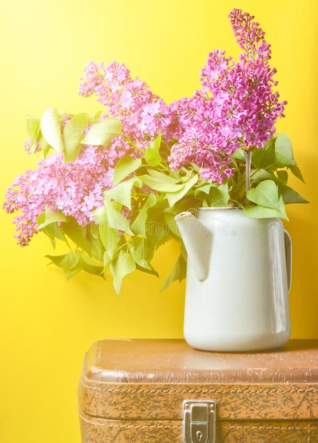 Bouquet of lilac in an old enameled teapot on vintage suitcase on yellow background. Retro style still life. Bouquet of lilac in an old enameled teapot on stock image