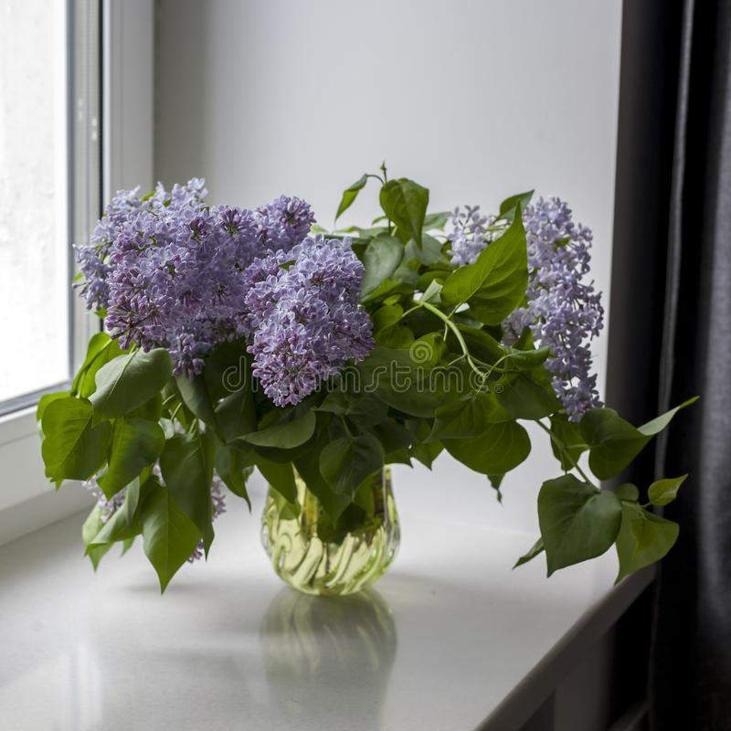 The bouquet of lilac twigs in a transparent jar on white chair as a decoration of interior. The girl sits on the window stock photos