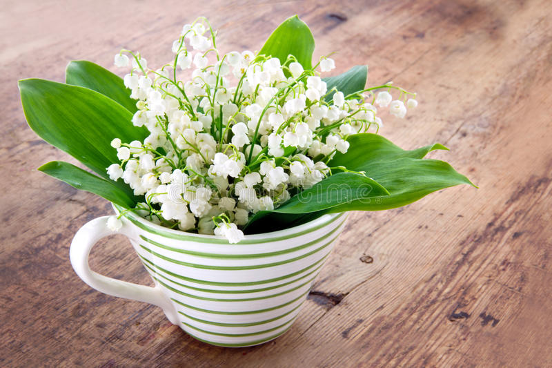 Bouquet Of Lily Of The Valley Stock Image