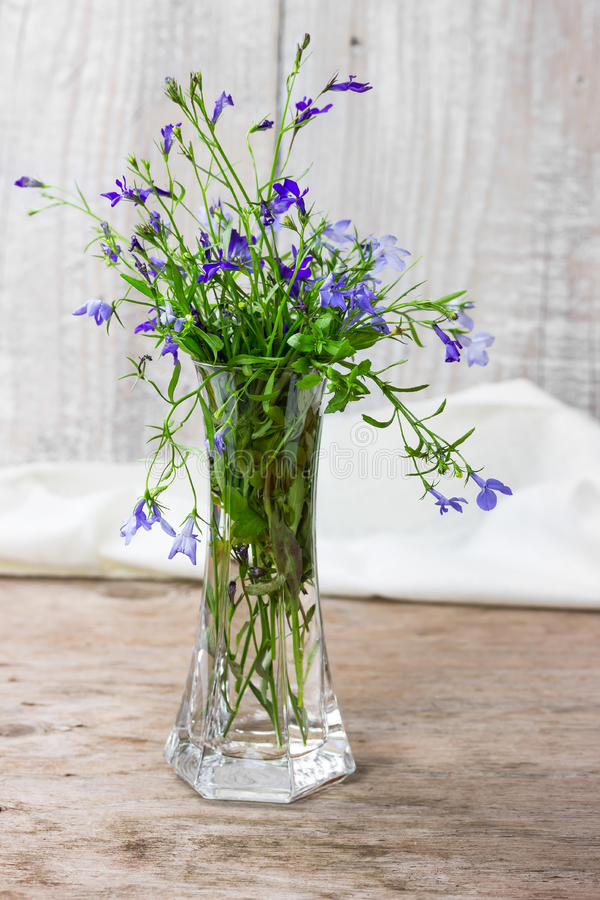 Bouquet of lobelia in a glass vase stock image