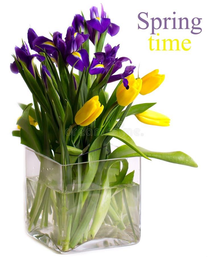 Bouquet lumineux des fleurs de ressort photos libres de droits