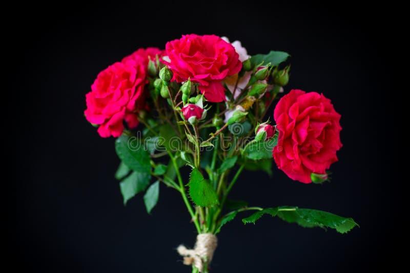 Bouquet med vackra röda rosor på en svart arkivbilder