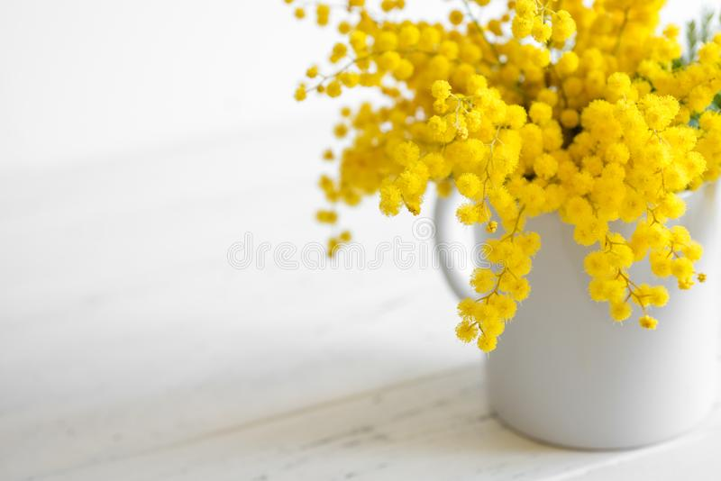 Bouquet of mimosa flowers on white wooden background. Springtime stock image