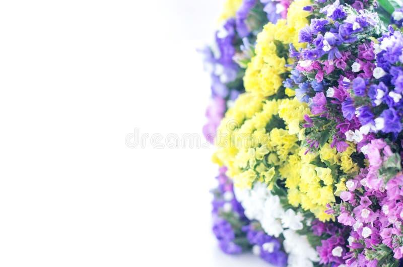 Bouquet multicolore de petites fleurs sur fond blanc image libre de droits
