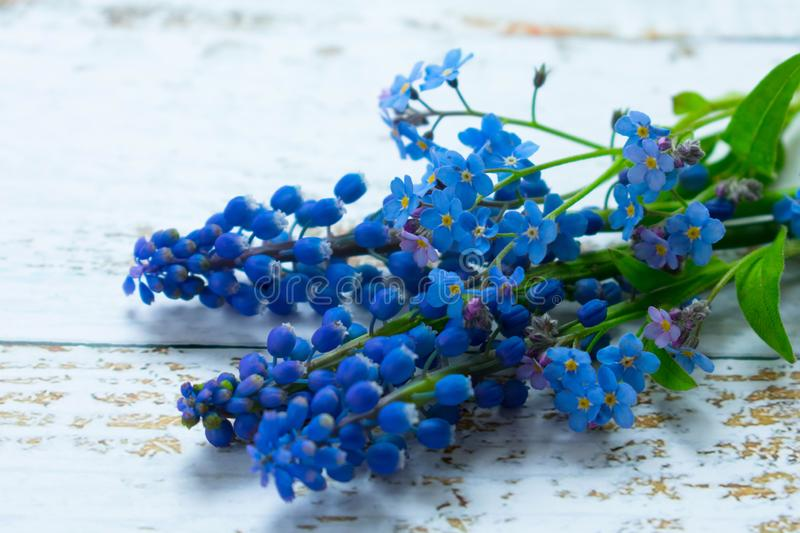 A bouquet of musary and small blue flowers on a light background. stock image