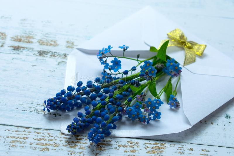 A bouquet of musary and small blue flowers in a white envelope decorated with a golden bow on a light background. stock image