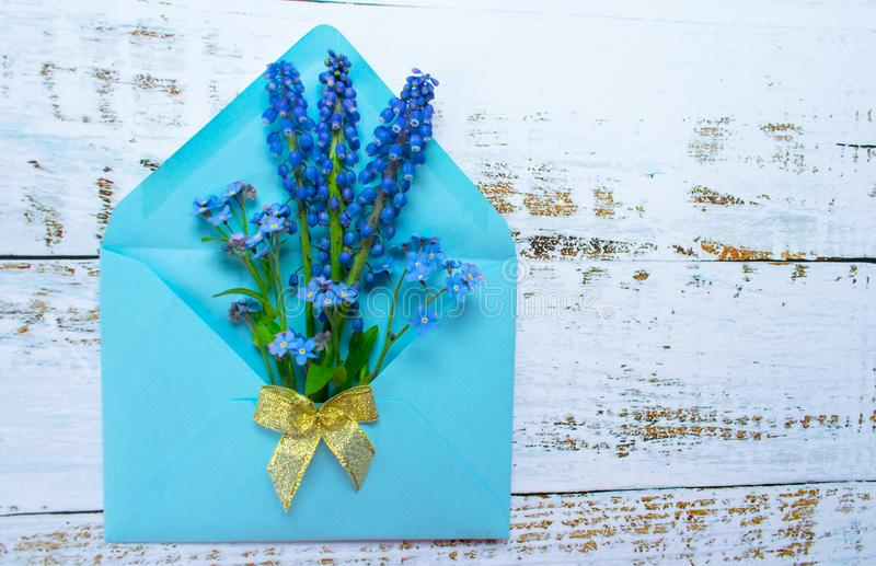 A bouquet of mussari and small blue flowers in a blue envelope is decorated with a golden bow on a light wooden background. postca stock images