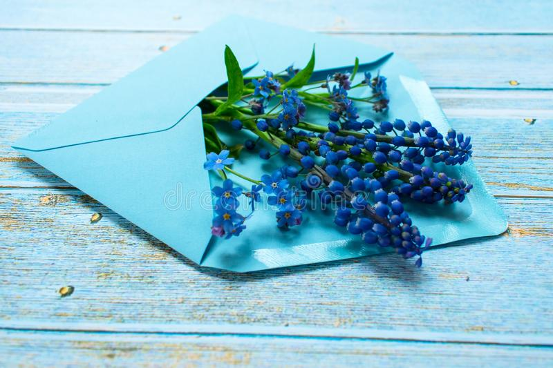 A bouquet of mussari and small blue flowers in a blue envelope is decorated with a golden bow on a light wooden background. postca royalty free stock photo
