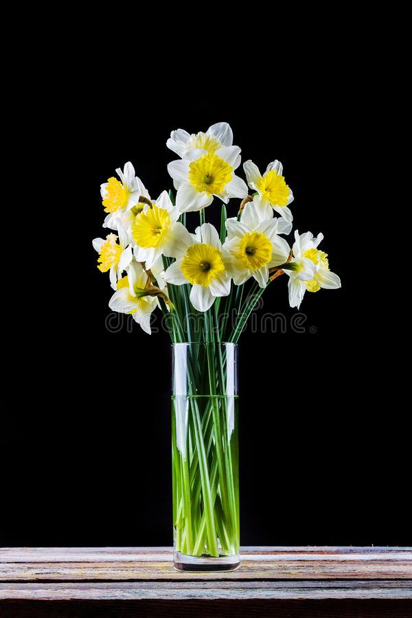 Bouquet of narcissus flower in a vase on the table on a black royalty free stock image