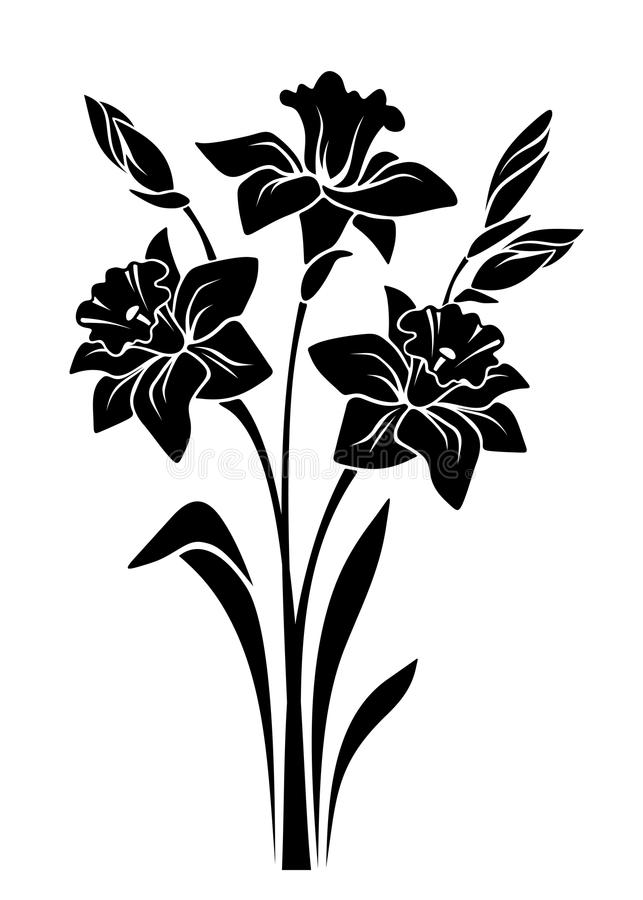 Bouquet Of Narcissus Flowers Vector Black Silhouette