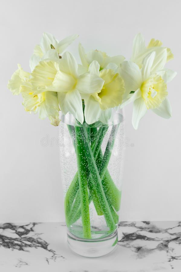 Bouquet of narcissus. Spring flowers. White and marble background stock images