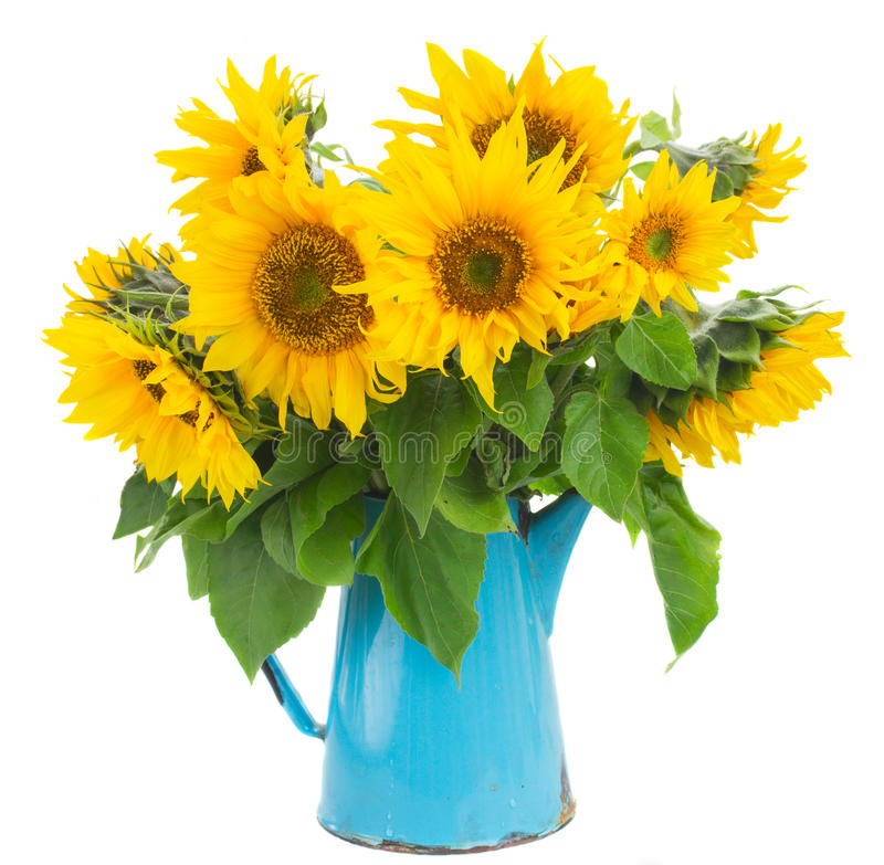 Free Bouquet Of Bright Sunflowers Royalty Free Stock Photos - 45555238