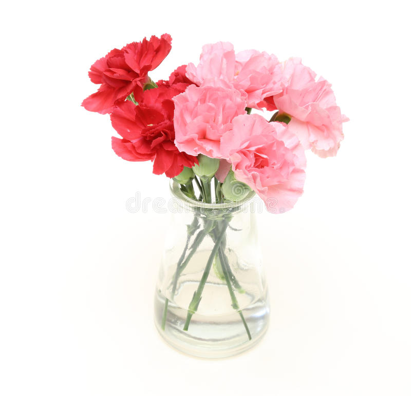 Free Bouquet Of Carnation In A Glass Bottle Stock Image - 61718071