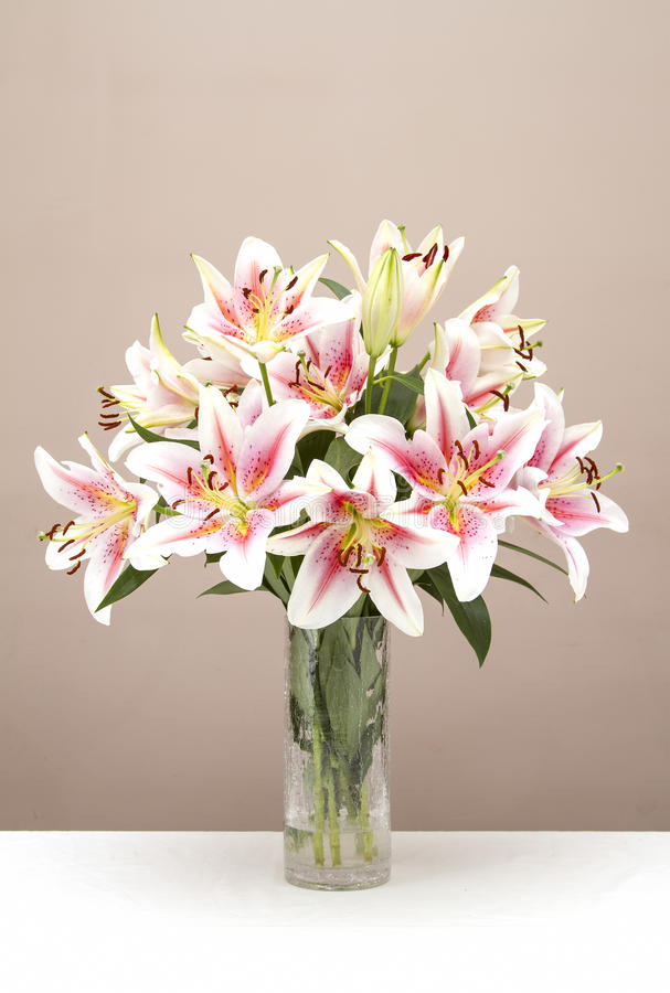 Free Bouquet Of Pink Lilies Stock Photos - 34440933