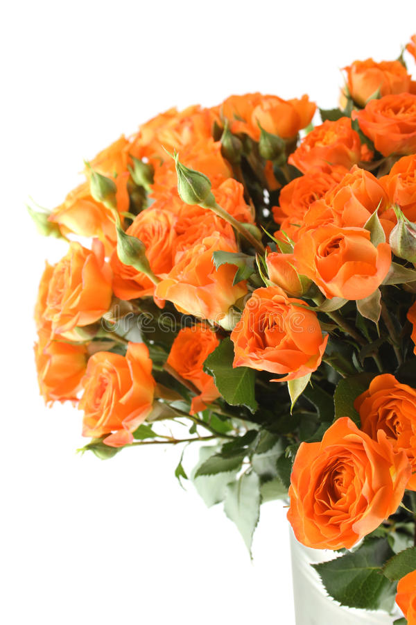 Free Bouquet Of Roses Stock Photo - 23402810