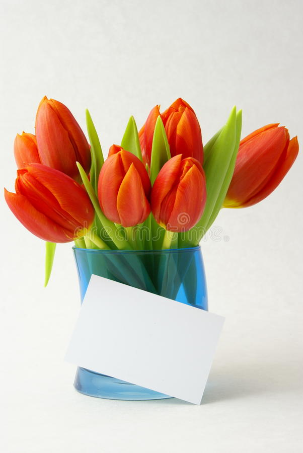 Free Bouquet Of Tulips Royalty Free Stock Photos - 13440778