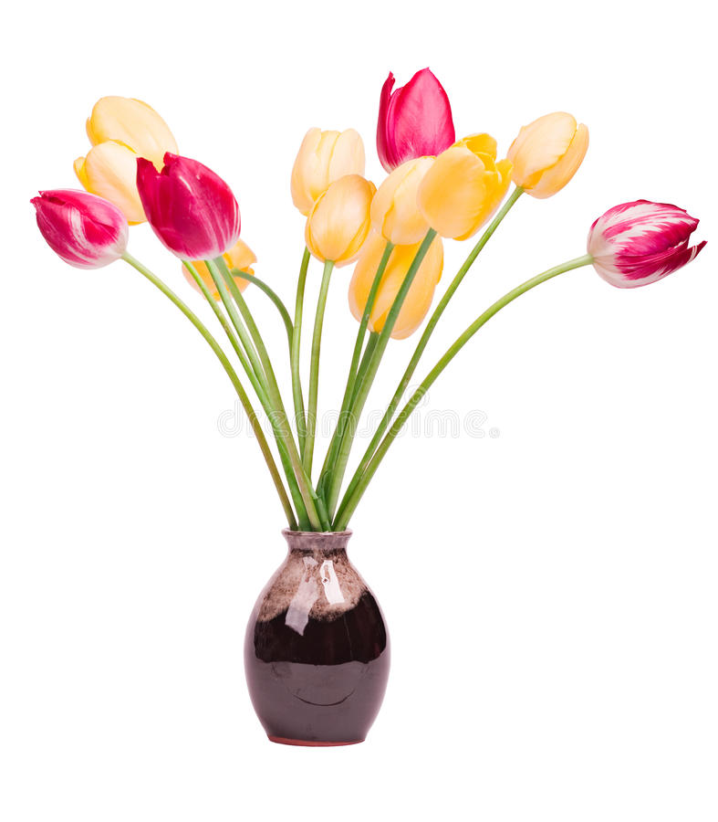 Free Bouquet Of Tulips Royalty Free Stock Photos - 14403848