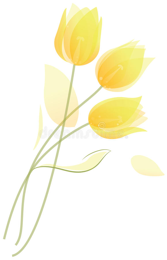 Free Bouquet Of Tulips Stock Photo - 29559600
