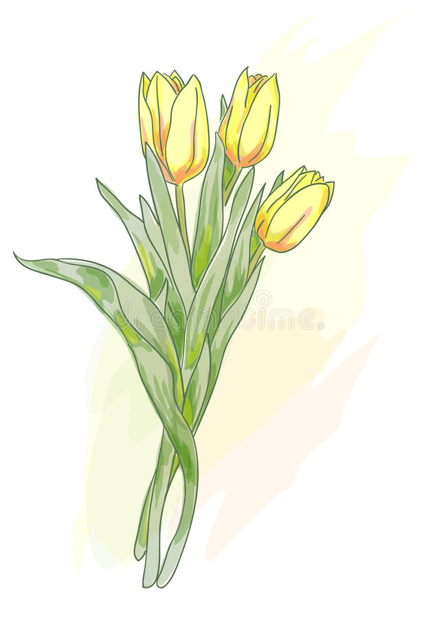 Free Bouquet Of Yellow Tulips. Watercolor Style. Royalty Free Stock Image - 23173146