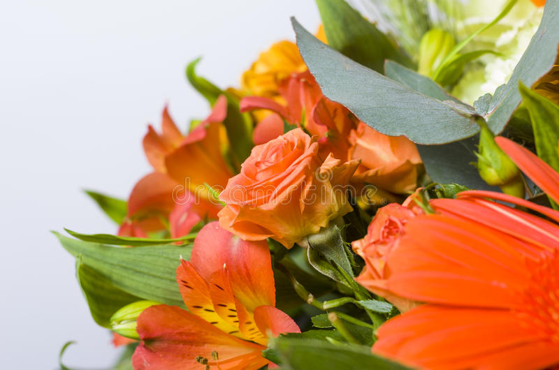 Bouquet of orange rose. stock images