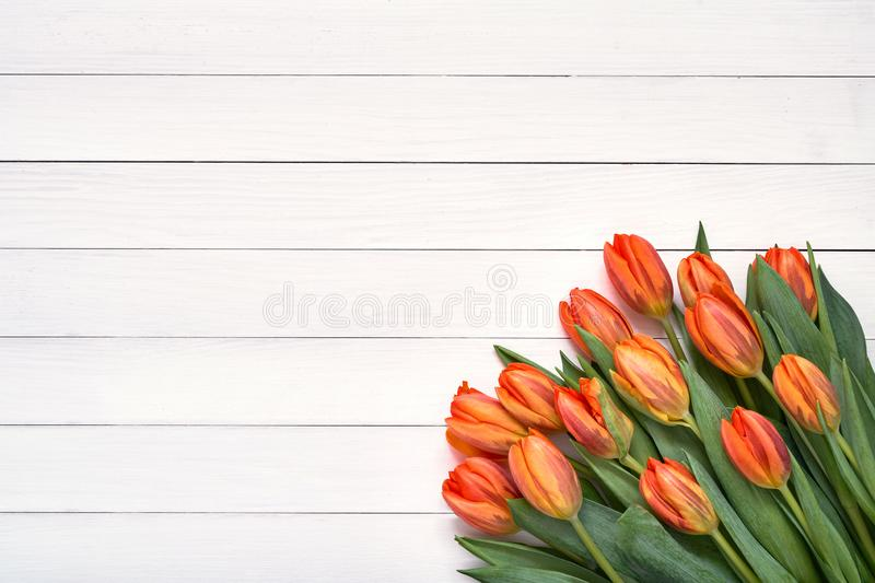 Bouquet of orange tulips on white wooden background. Top view, copy space. Holiday background, greeting card stock photos