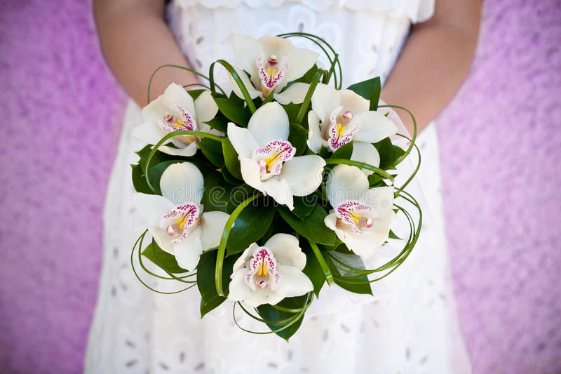 Bouquet of orchids stock photography