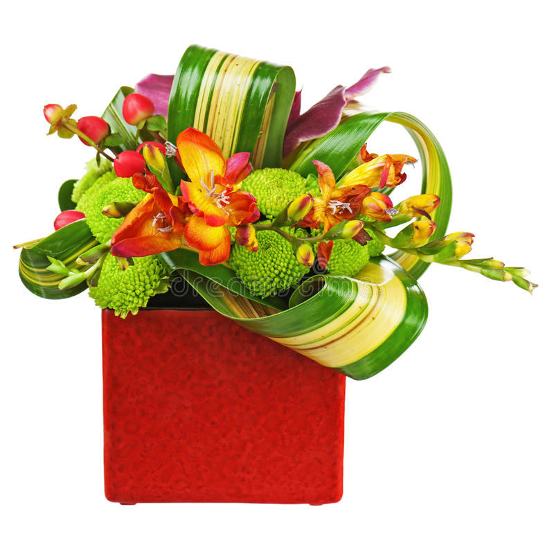 Bouquet from orchids in red vase isolated on white background. stock images
