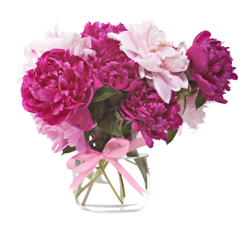 Bouquet of peonies blooms royalty free stock images