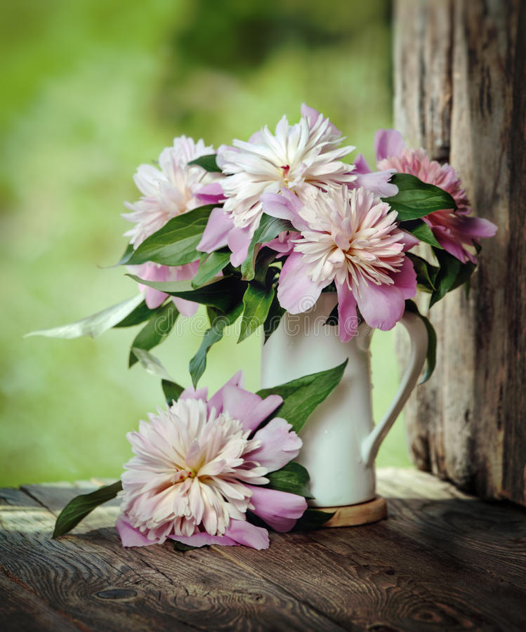 Bouquet peons on the window of the old boards stock image