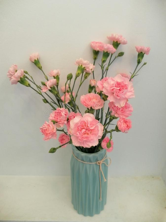 Bouquet of pink carnations in a vase stock image