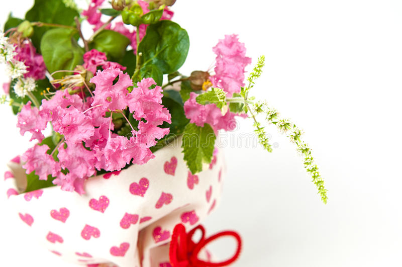 Bouquet of pink crepe myrtle. Isolated on a white background royalty free stock photos