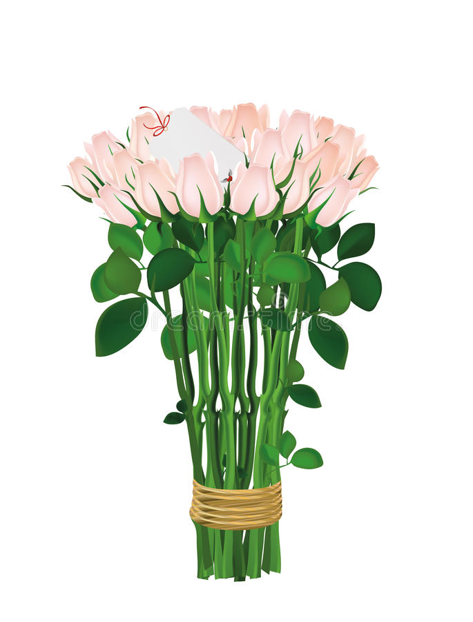 Bouquet of pink flowers. Roses tied with a rope. Inside blank royalty free illustration