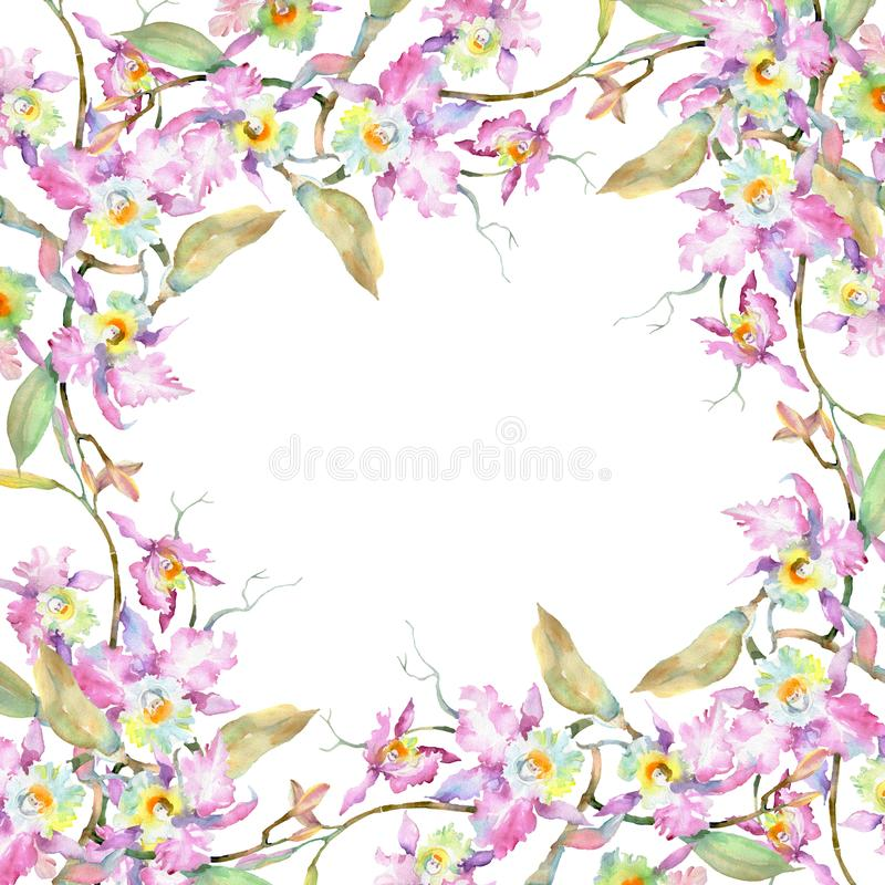 Bouquet of pink orchid. Floral botanical flowers. Watercolor background illustration set. Frame border ornament square. royalty free stock image