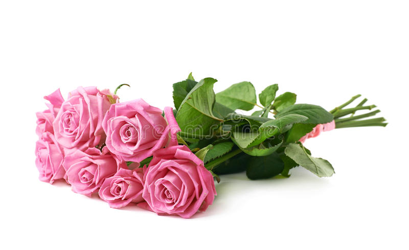 Bouquet of pink roses isolated royalty free stock photo