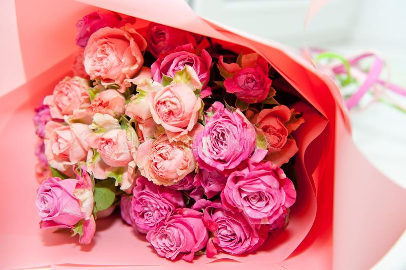 Bouquet of pink roses packaged in pink paper, closeup shot royalty free stock image