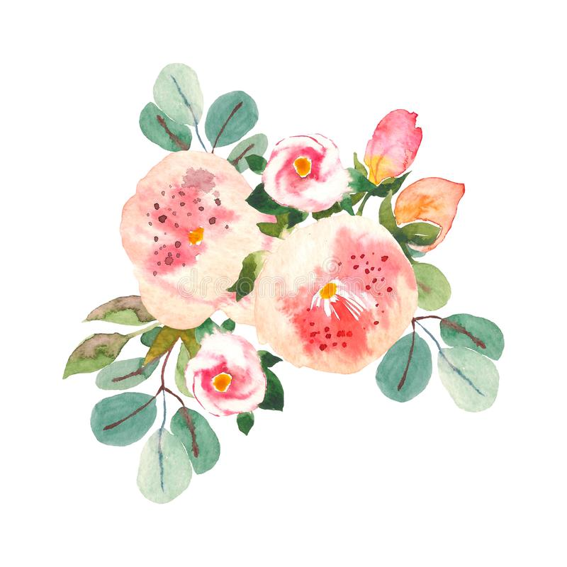 Bouquet with pink roses and peonies with green leaves on the white background. Watercolor romantic garden flowers. Card stock illustration