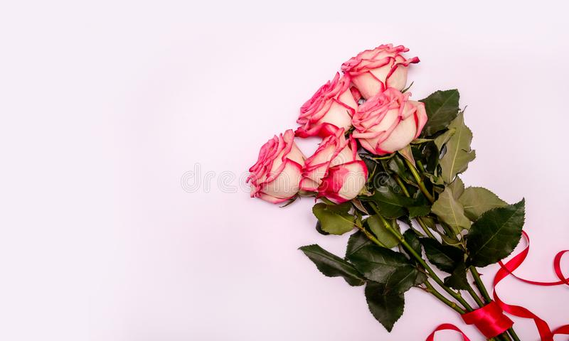 Bouquet Pink Roses on a White Background. Concept International Woman Day 8 March, Valentine`s Day, Greeting Card. Declaration of Love. Flat Lay. Copy Space royalty free stock photography