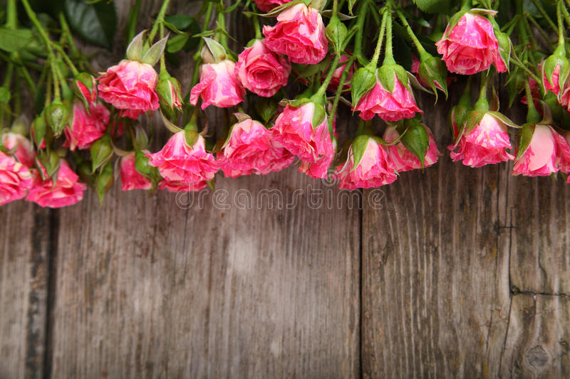 Bouquet of pink roses. On a wooden background royalty free stock photos