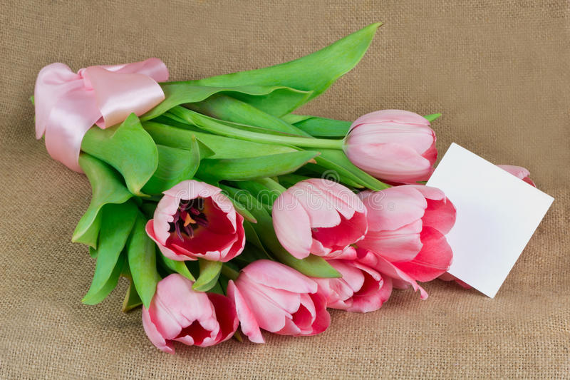 A bouquet of pink tulips with satin ribbon and little postcard royalty free stock images
