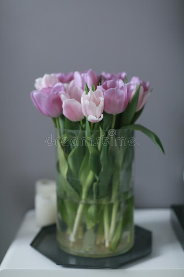 Bouquet of pink tulips in a vase, close up stock photos